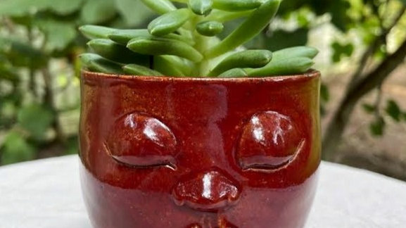 Succulent Head Planter - Deep Red