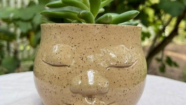 Succulent Head Planter - Clear