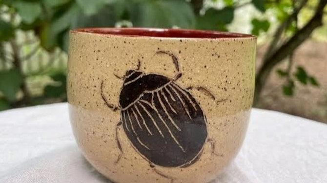 Succulent Bowl - Beetle