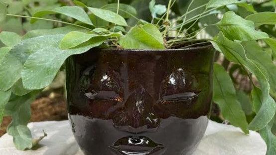 Medium Head Planter - Adventurine
