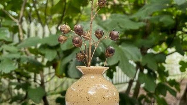 Mini Bud Vase - Clear