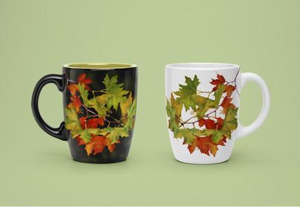 """Mug """"autumn leaves"""""""
