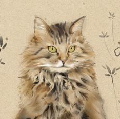 Les chats d'Odile
