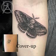 Coverup_Moth_B&G.jpg