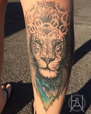 Lion with nebula.jpg