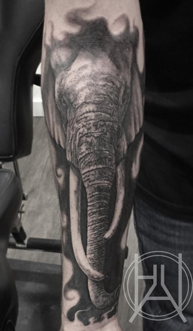 Elephant head on forearm.jpg