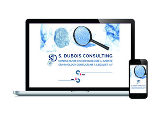 S.DUBOIS CONSULTING