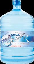 Заказать серебряную воду Аква Сильвер