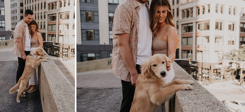 Golden retriever puppy on Detroit rooftop. Photographed by Nicole Leanne Photography.