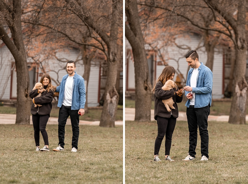 Wedding proposal with golden retriever puppy in Metro Detroit. Photographed by Nicole Leanne Photography