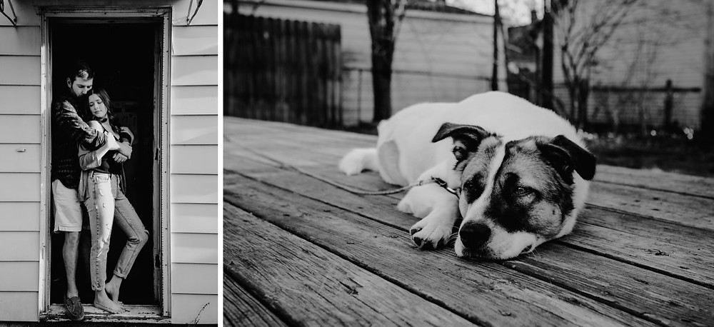 Black and white photo of dog laying on deck in the sun. Photographed by Nicole Leanne Photography.