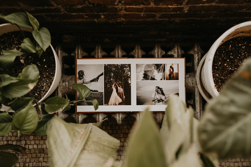 Overhead shot of photo album surrounded by plants. Photographed by Nicole Leanne Photography
