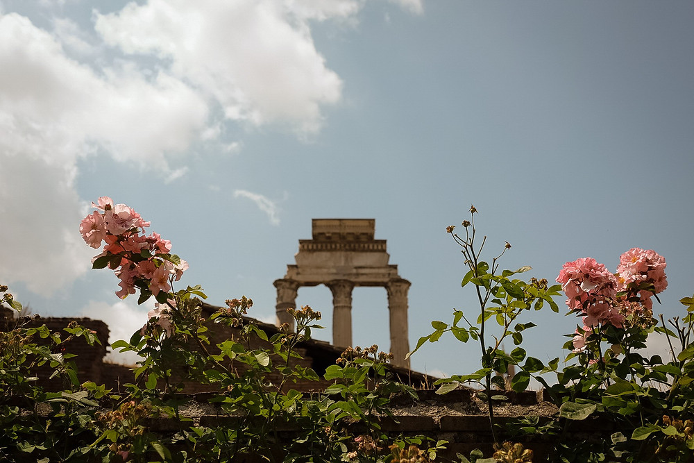 flowers at the Roman Forum