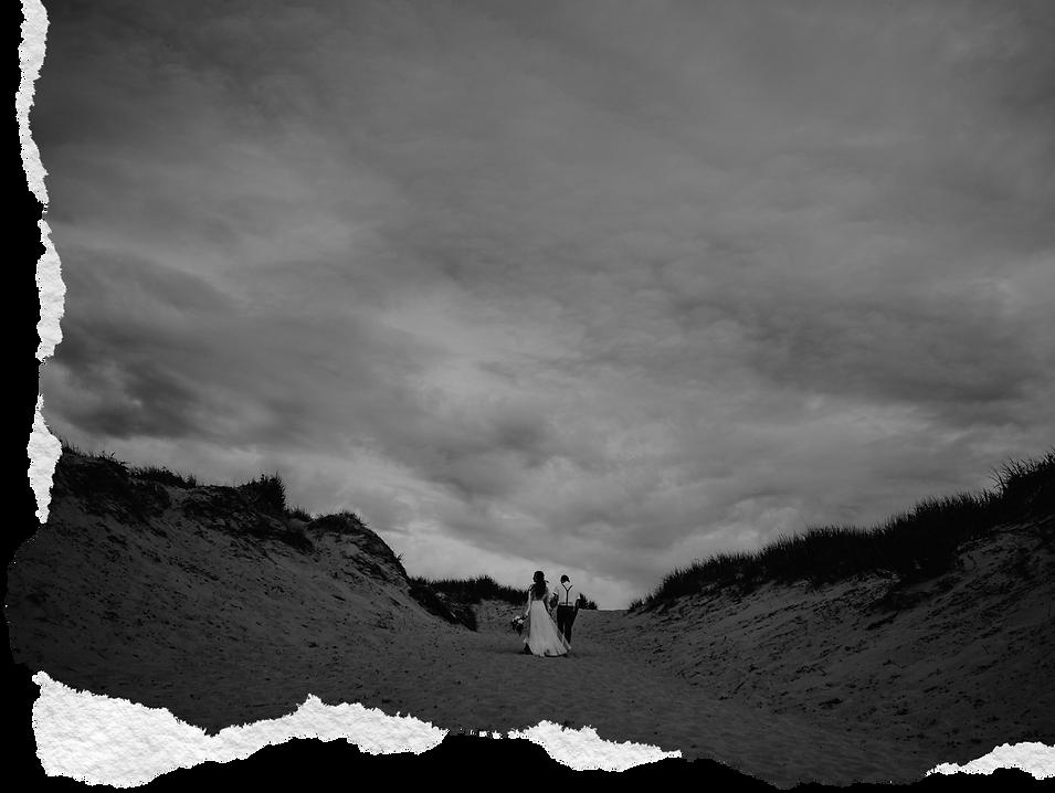 1_metro-detroit-wedding-photographer_nic