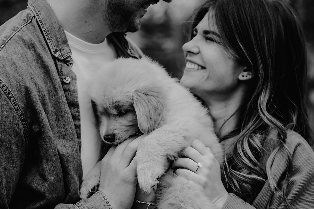 Couple hugging puppy after proposal at Royal Oak Park. Photographed by Nicole Leanne Photography