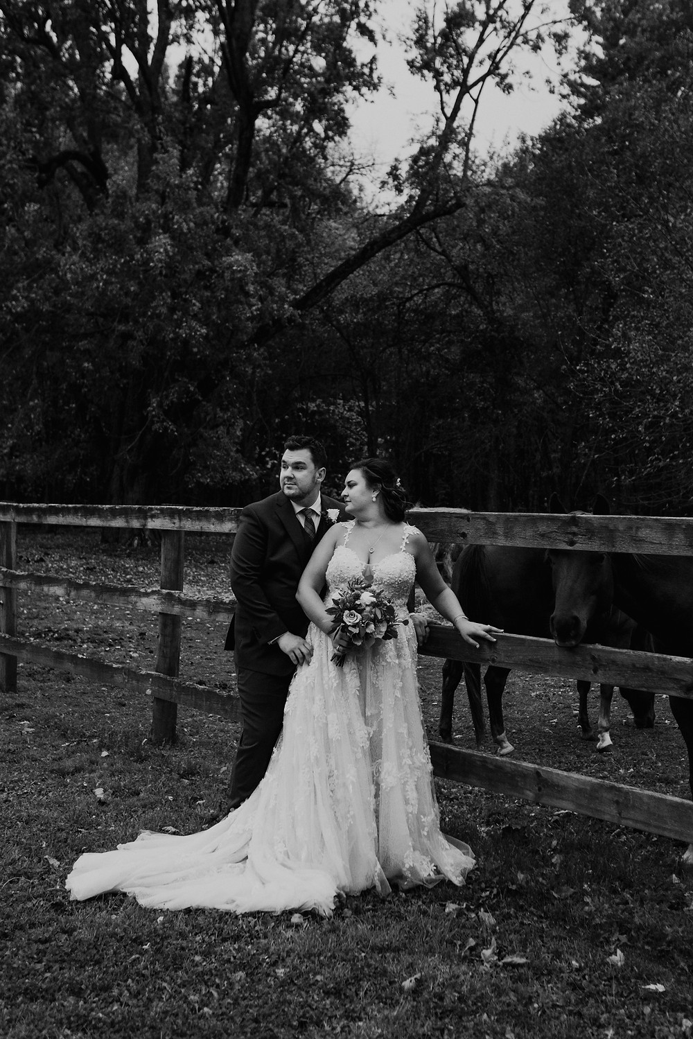 Bride and groom wedding photos with horses