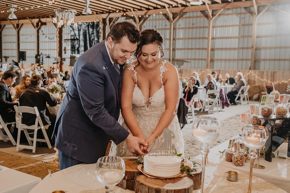 Bride and Groom cut cake at Metro Detroit wedding