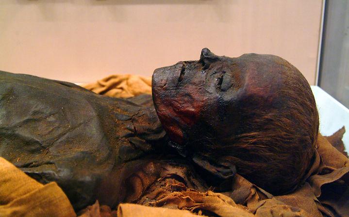 MummyUnidentifiedWoman0017.jpg