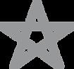 E-Star-Silver.png