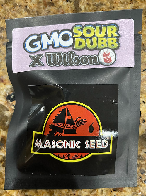GMO Sour Dubb x Wilson