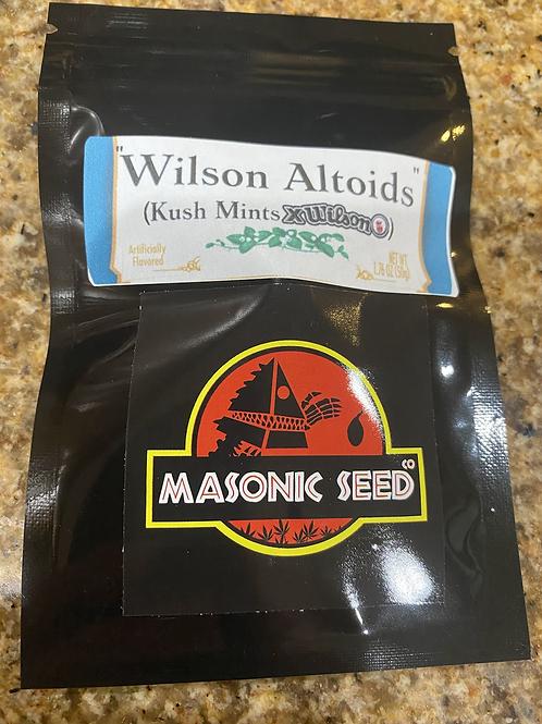 Wilson Altoids