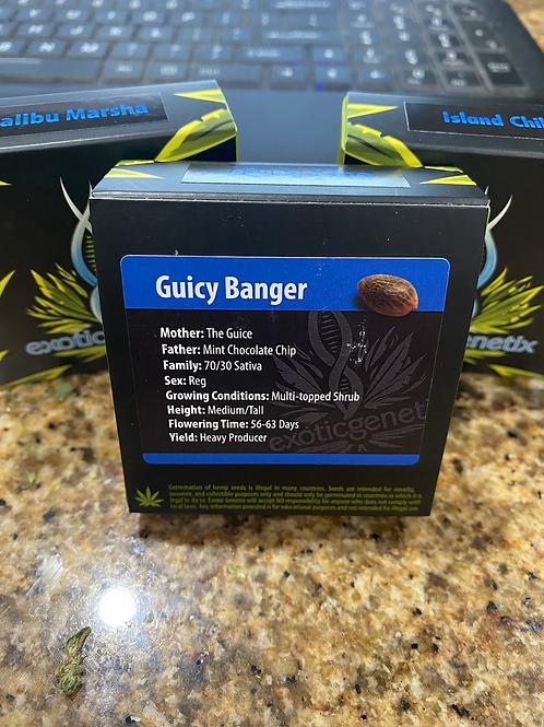 Guicy Banger