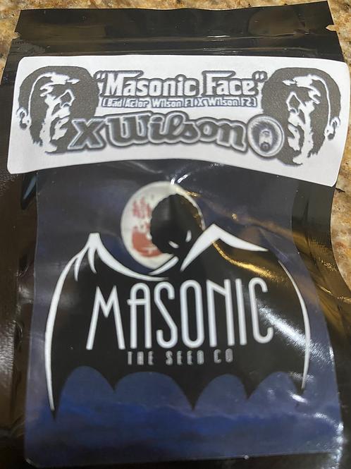 Masonic Face