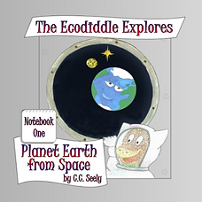 Notebook 1 - Planet Earth from Space.png