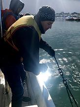 Trawl 4.jpg