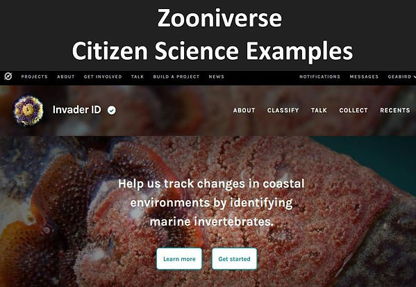 Zooniverse+Citizen+Science+Examples.jpg