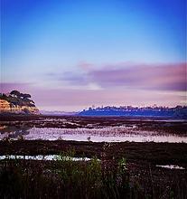 back bay sunrise.png