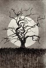 crosby_tree_et.jpg