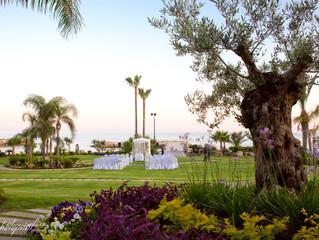 wedding venue in Amathus Limassol Hotel, cyprus