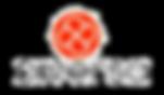 Logo Diversa transparente.png