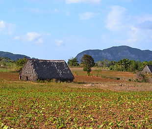 vinales valley.jpg