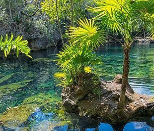 mexico cenote.jpg