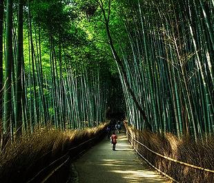 kyoto-1229559_640.jpg