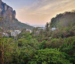 thailand-4852121_640.jpg