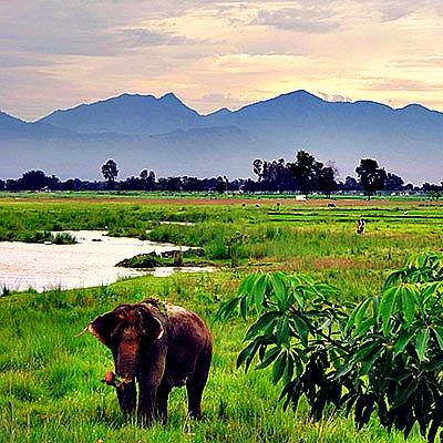 Gurujourneys | EXPRESS TO NEPAL