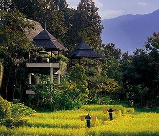003495-02-villa-exteriors-jungle-view.jp