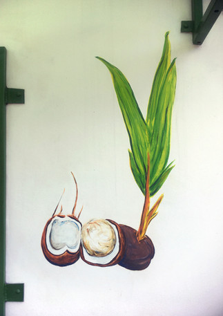 right koko zerm