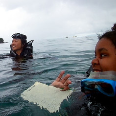 Coral Monitoring Dive