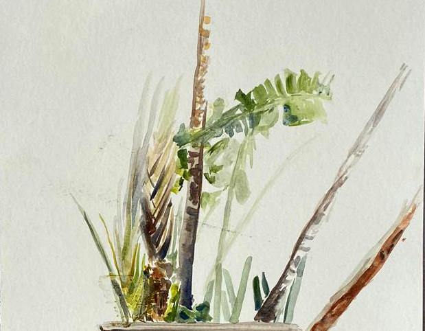 Voyager Palms, Botanical Garden