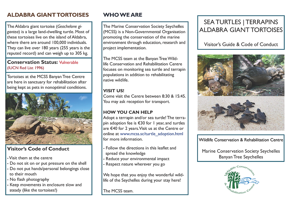 mcss_banyan_leaflet_final_Page_1.png