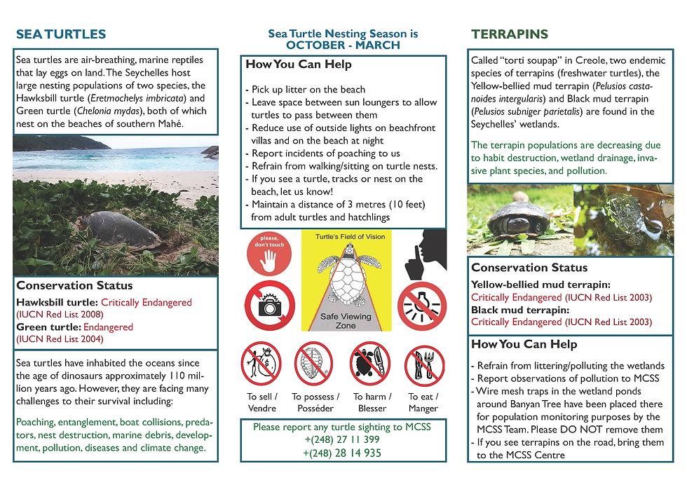 mcss_banyan_leaflet_final_Page_2.png