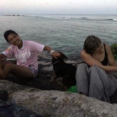 dogs on beach rock