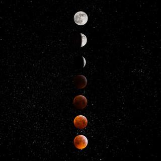 Super Wolf Blood Moon.jpg