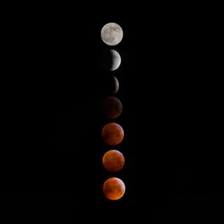 Superwoolf blood moon