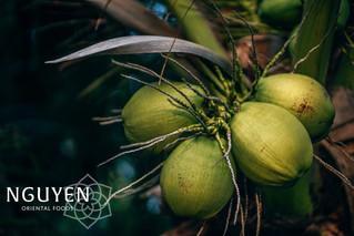 Dranken | Kokoswater en variaties