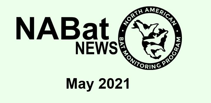 NABat News May 2021